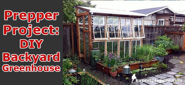 diy backyard greenhouse